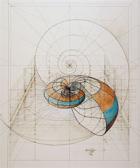golden proportion in design hand drawn coloring book reveals mathematical beauty of nature s designs with golden ratio