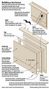 Bat houses on pinterest bat house plans bats and mosquitoes for Diy bat house plans