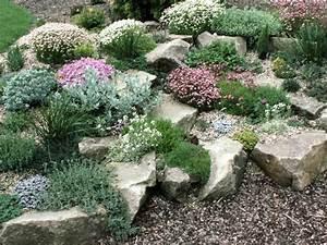 Planting a Rock Garden - Plants For Rock Gardens HGTV