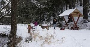 Weihnachten Im Erzgebirge : weihnachten im erzgebirge mit hund ~ Watch28wear.com Haus und Dekorationen