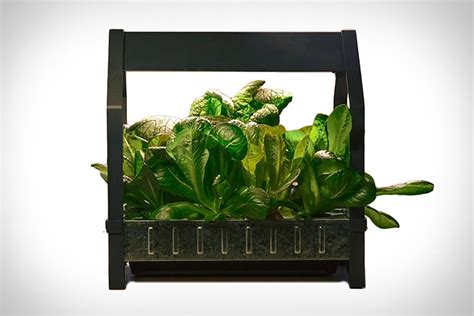 my feedly ikea indoor garden your personal shopping