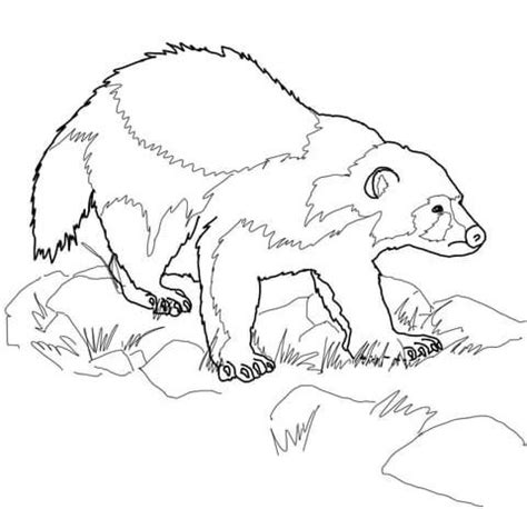 MI Wolverine Animal coloring page from Wolverine category