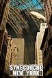 Synecdoche, New York Movie Review (2008) | Roger Ebert