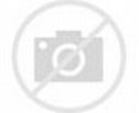 Pair US Army General Officer Six Star Badge Pin Insignia ...