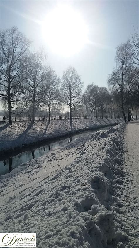 Best 25+ Winter Photography Ideas On Pinterest  Winter Pictures, Snow Photography And Christmas
