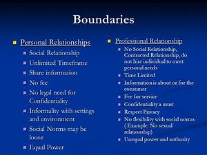 Seeing the Forest and the Trees: Professional Boundaries ...