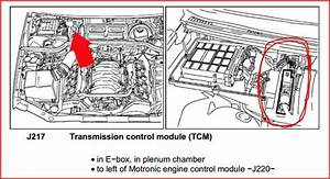 Audi S8 2001 Tcu Location