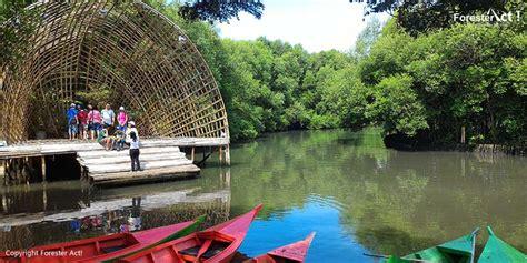 taman wisata alam angke kapuk taman wisata  asik