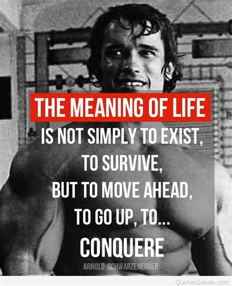 conquer arnold wallpaper bodybuilding quote