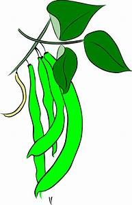 Green French Bean Clip Art at Clker.com - vector clip art ...