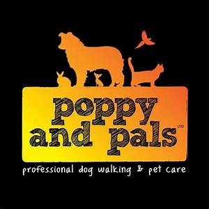 Poppy and pals poppyandpals twitter for Professional dog walking service