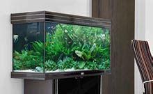 aquarium eau douce acheter un aquarium meubles accessoires aquarium jardinerie truffaut
