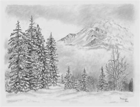 Drawn Mountain Forest Landscape Pencil And In Color