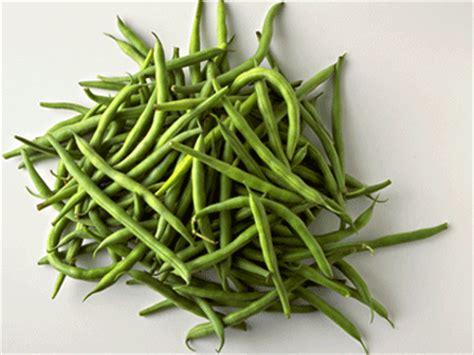 comment cuisiner les haricots verts 28 images comment