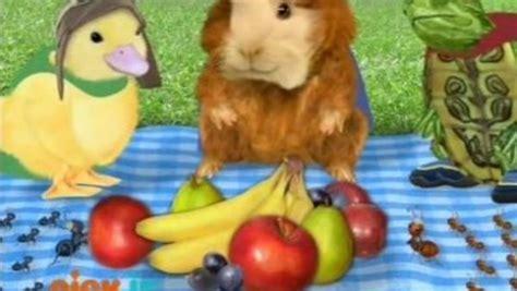 The Wonder Pets! Season 1 Episode 22