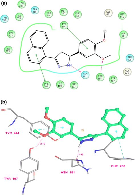 Ligand-receptor interaction diagram of compound 2i at the ...