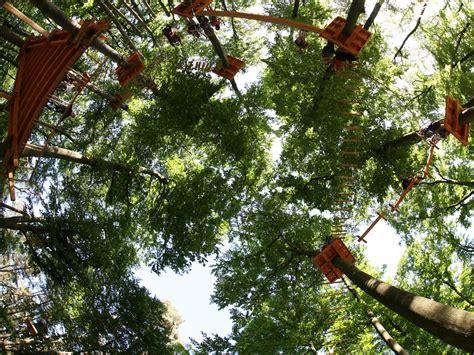 forest adventures kletterpark wetter hochseilgarten