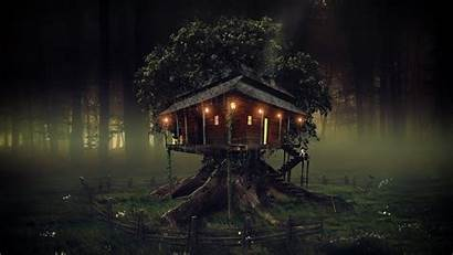 Dark Tree Treehouse Wallpapers Fantasy 1080 1920