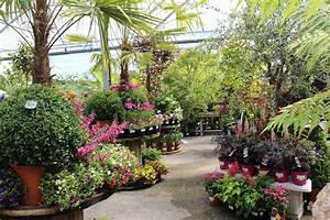 Doyles Nursery & Garden Centre | Dublin | Cabinteely