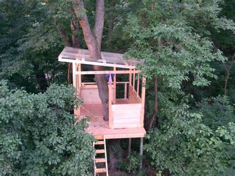 corrugated roof treehouse frame pinterest