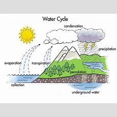 Diagrams Of The Water Cycle 2017  Diagram Site