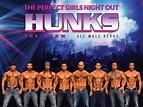 HUNKS The Show / Selak Entertainment, Inc.