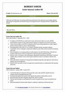 Summary Example For Resume Senior Internal Auditor Resume Samples Qwikresume