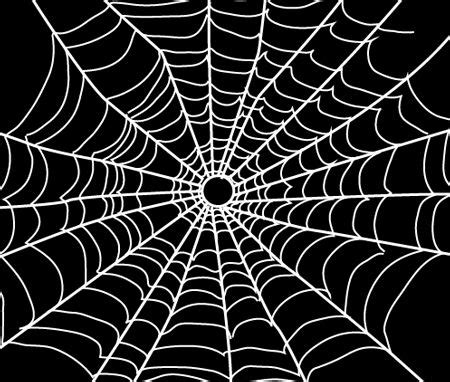 draw spider webs  easy step  step drawing