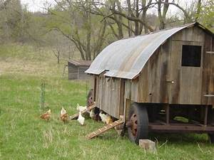 8405 Best Images About Chicken Coop Decor On Pinterest