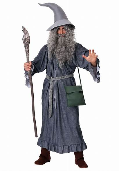 Wizard Gandalf Costume Lord Rings Adult Grey