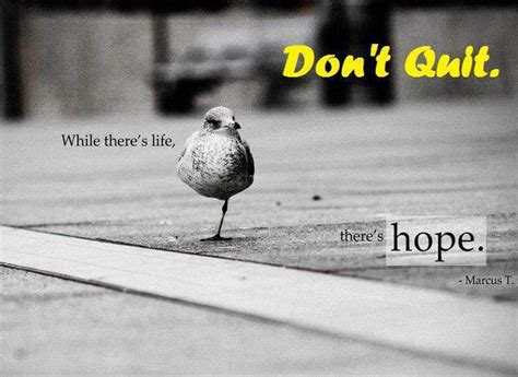 motivational wallpaper  hope dont quit dont give