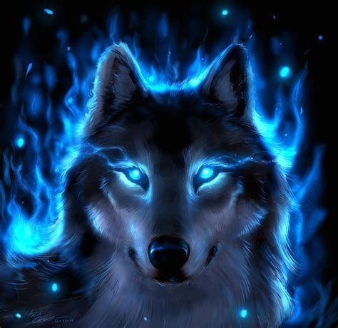 Blue And Purple Wolf Wallpaper by Blue Wolf Wallpaper 52