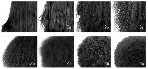 Types Of Hair by What Of Hair Texture Do You Somali Spot