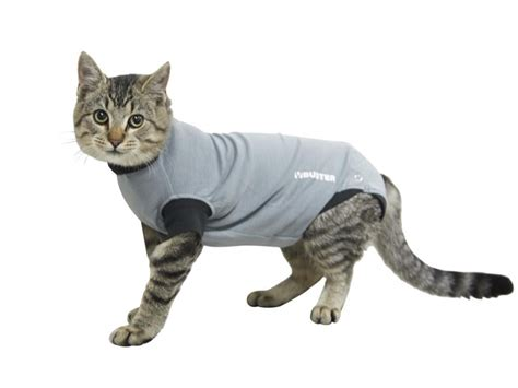 Buster Body Suit For 🐶 Dogs & 🐱 Cats