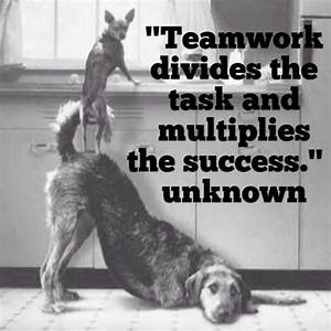 Quotes About Teamwork And Success. QuotesGram