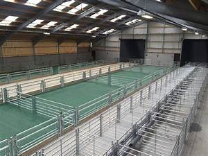 CAFRE Hill Farm Centre - New Sheep House - Quinn Automatic