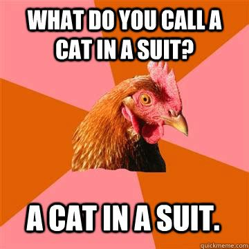 Cat In Suit Meme - what do you call a cat in a suit a cat in a suit anti joke chicken quickmeme