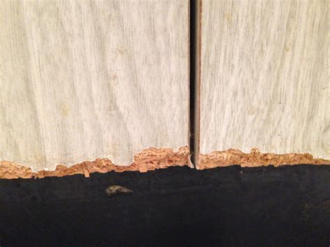 doors   How to repair (or hide) chipped kitchen cabinets