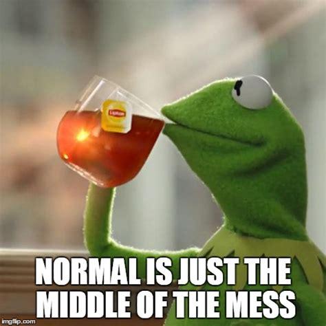 Normal Meme - normal imgflip