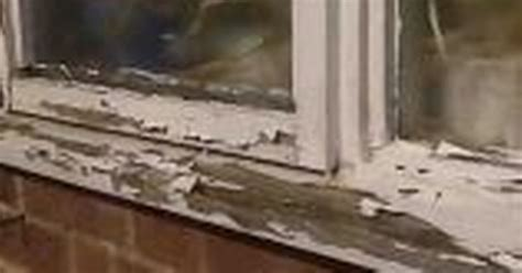 Replace Window Sill Outside by Diy Dave Repairing And Painting A Rotten Window Sill