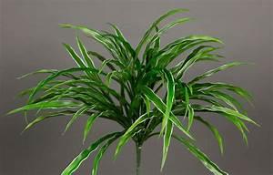 Orchideen Ohne Topf : dracenabusch 36cm gr n wei ohne topf yf kunstpflanzen grasbusch k nstliches gras dekogras ~ Eleganceandgraceweddings.com Haus und Dekorationen