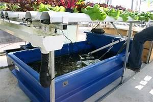 Crappie Aquaponics  Brilliant Aquaculture System Designed