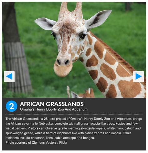 zoo 10best exhibit choice usa featured reader today partner