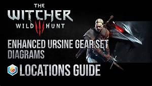 The Witcher 3 Wild Hunt All Enhanced Ursine  Bear School