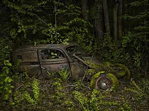 Paradise parking automobiles reclaimed by nature colossal for Paradise parking automobiles reclaimed by nature