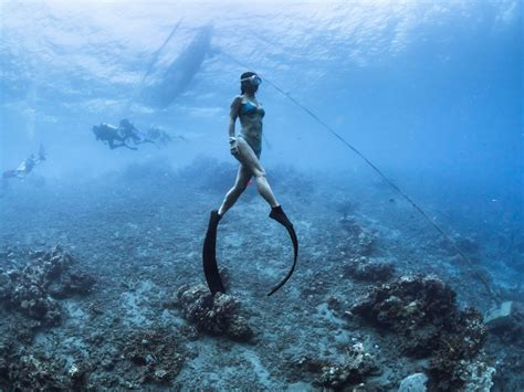 freediving bali padi womans day 2017 50 discount on