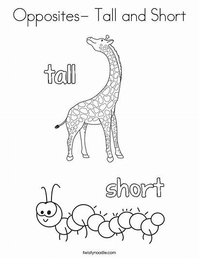Opposites Tall Coloring Short Worksheets Preschool Soft