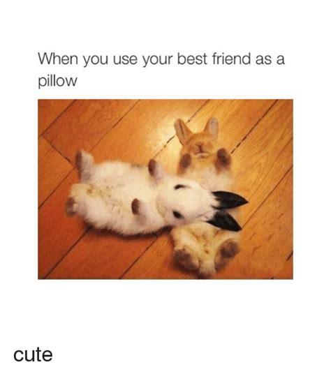 Cute Best Friend Memes - 25 best memes about friends friends memes