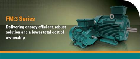 Electric Motor Standards by Ie3 Electric Motors From The Fenner Brand