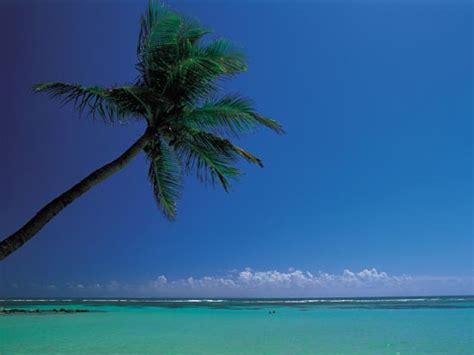 air caraibes reservation si鑒e les antilles la caraïbe française tonic tourisme et ses partenaires agence de voyage